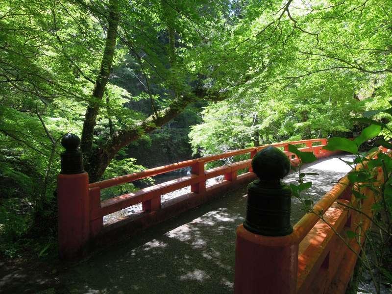 A bridge near Jingo-ji Temple, Takao