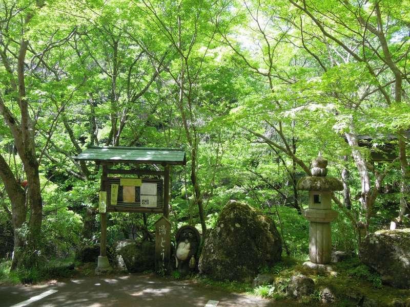On the way to Jingo-ji Temple, Takao