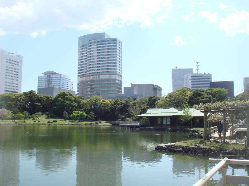 Surrounded by skyscrapers, the Edo period 17th-century Hamarikyu Garden gives a breathtaking view.