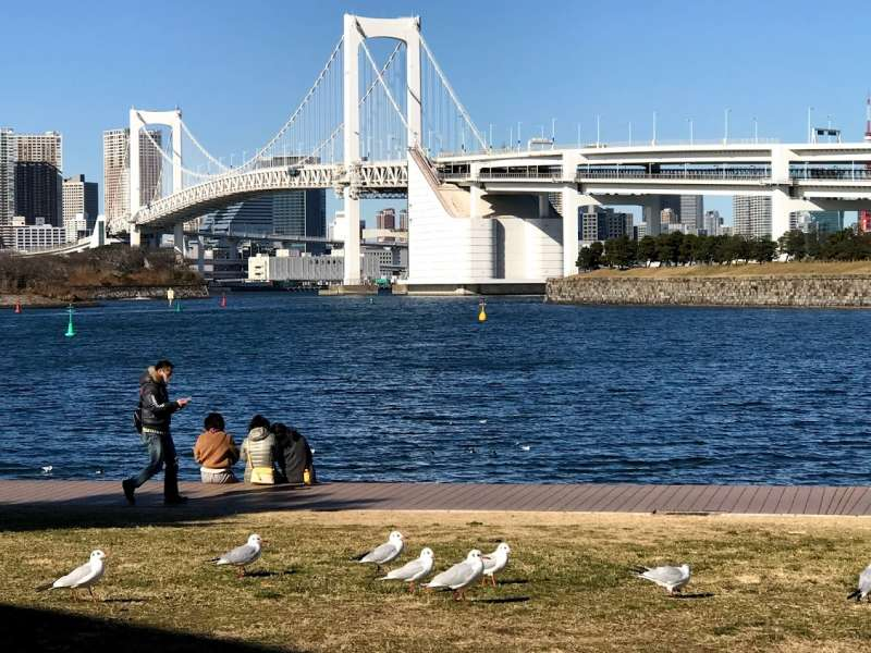 Tokyo Bay Bridge is a landmark of Tokyo. It is beautiful scenery from the window of the cruise boat.