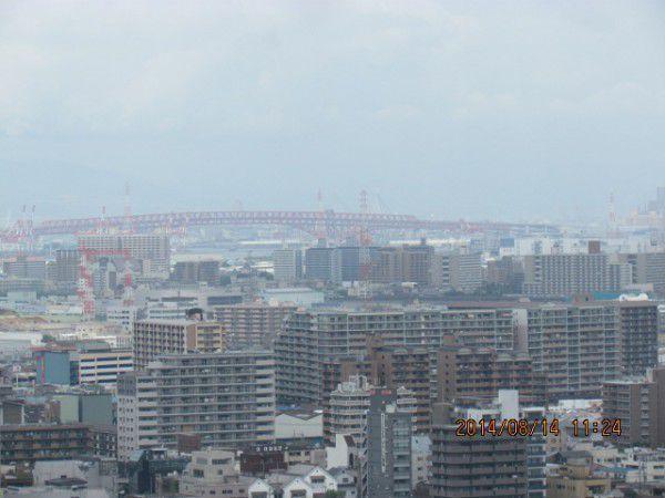 Minato Ohashi Bridge ( from the observation deck)
