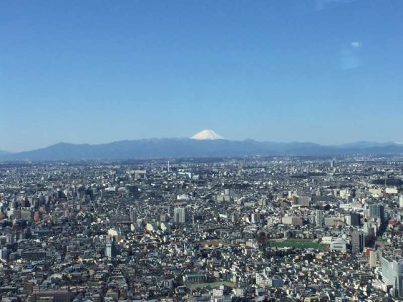 You can enjoy panoramic views of whole Tokyo from Metropolitan Government Building. Weather permitting, it is possible to see snow-capped Mt.Fuji.