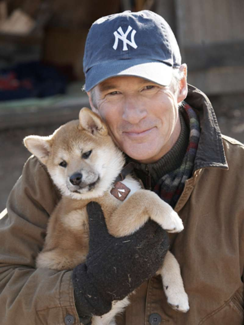 Richard Gere plays a main actor of American movie, The Dog's Tale.  It's pity but beautiful story,,,