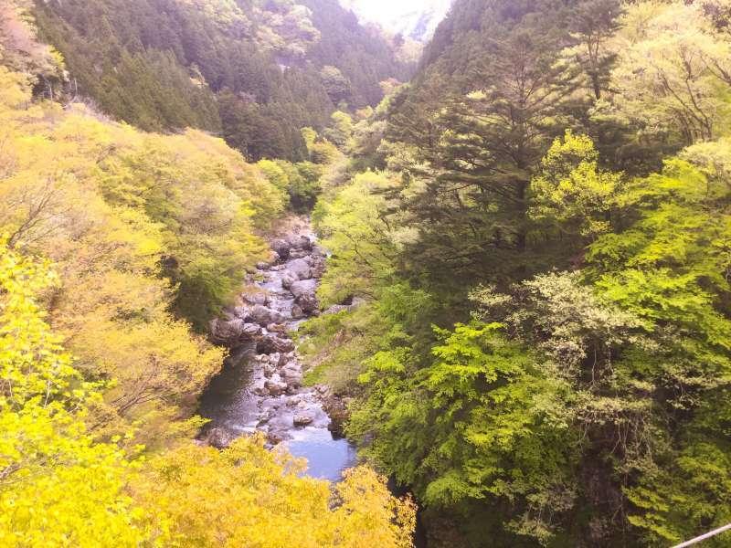 Sogaku Ravine from a suspension bridge