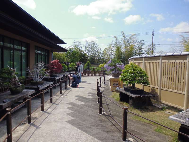 The courtyard of Bonsai Art Museum