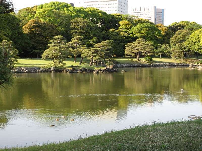 Hamarikyu feudal garden