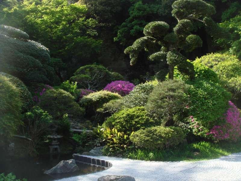 Landscape garden in the Hokokuji temple, Zen sect, has been a training center of Zen Buddhism.