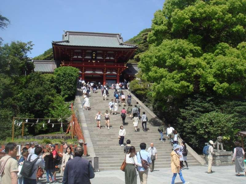 Tsurugaoka Hachimangu shrine dedicated to the Shogun, Minamoto Yoritomo, is so magnificent and a large number of visitors come to pray every new year week.