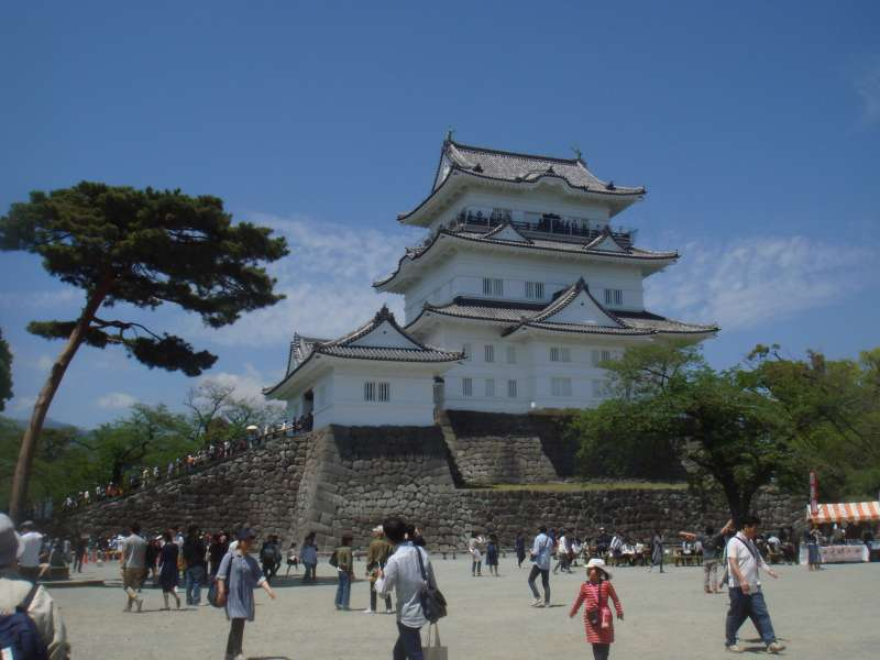 Odawara castle, one of the most famous warring state forts, led by Hojo Soun, in the 16 century. It is proudly showing fierce and brilliant history.  From February to April, plum flowers / Japanese apricot/ and cherry blossoms draw many tourists with their beauty every year.