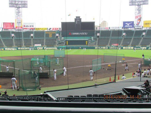 Players of Hanshin Tigers practice on the ground.