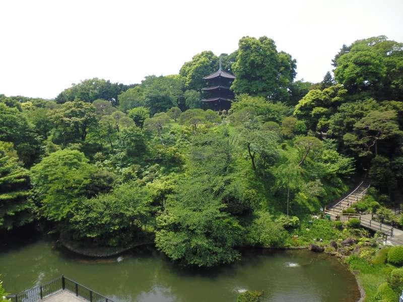 Japanese-style garden in Chinzanso