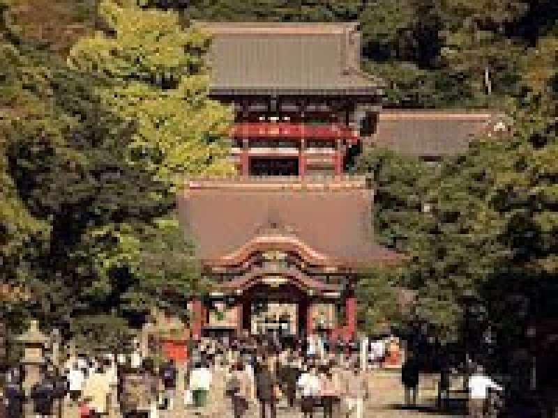 Tsurugaoka Hachimangu Shirine in Kamakura.