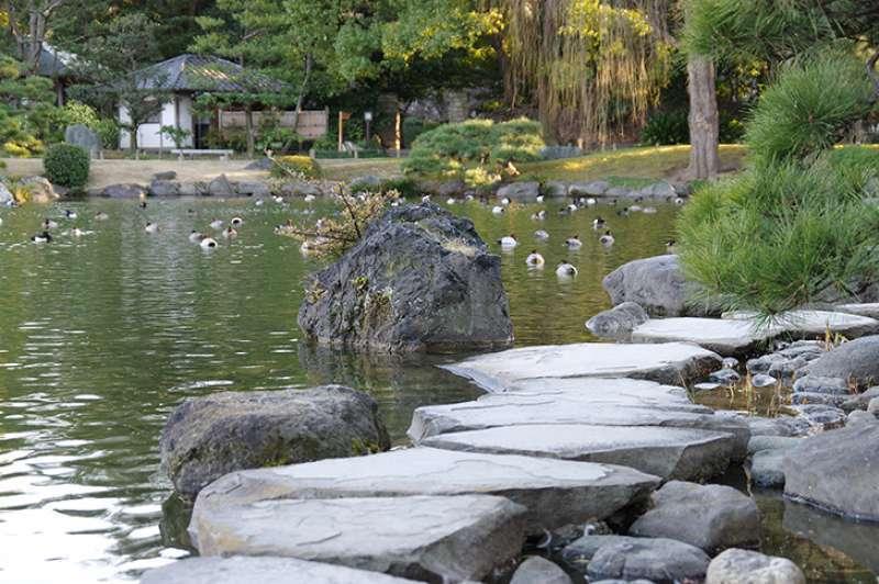Isowatari:  Step on stones!  Scarery?  It's just fun!