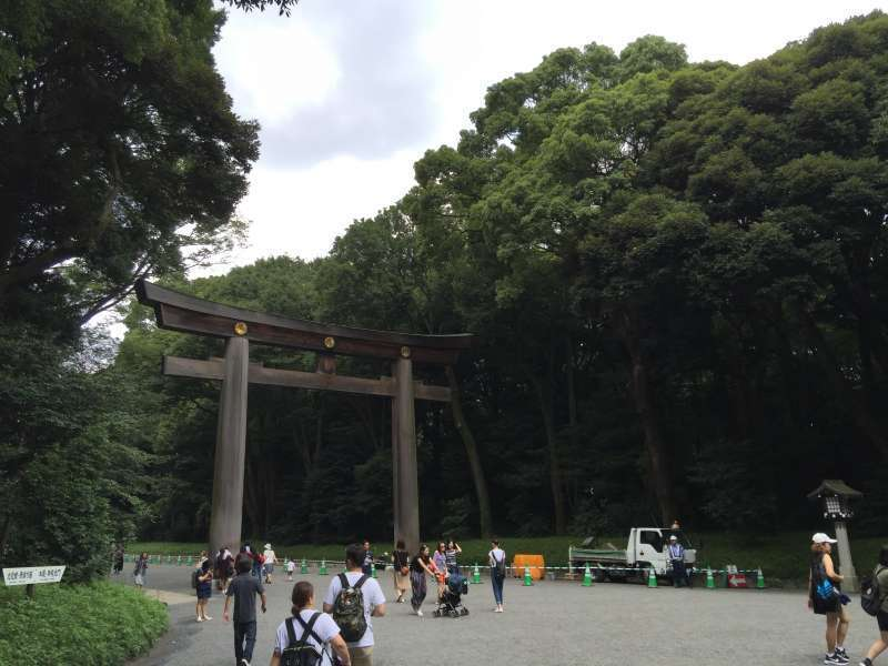 Meiji shrine surrounded by the forest