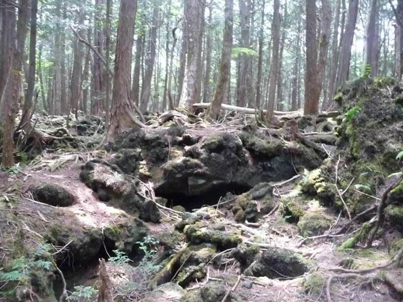 Here you see lava cave, moss,,,,.