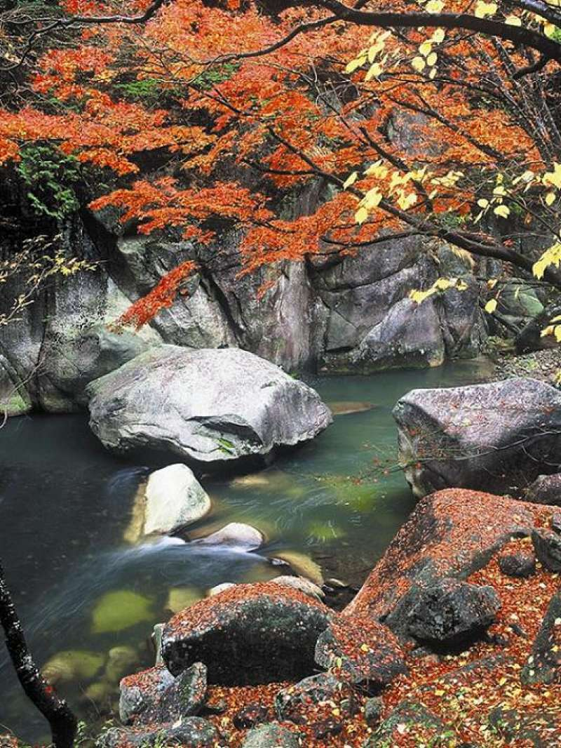 Clear river water in the Shosenkyo gorge.