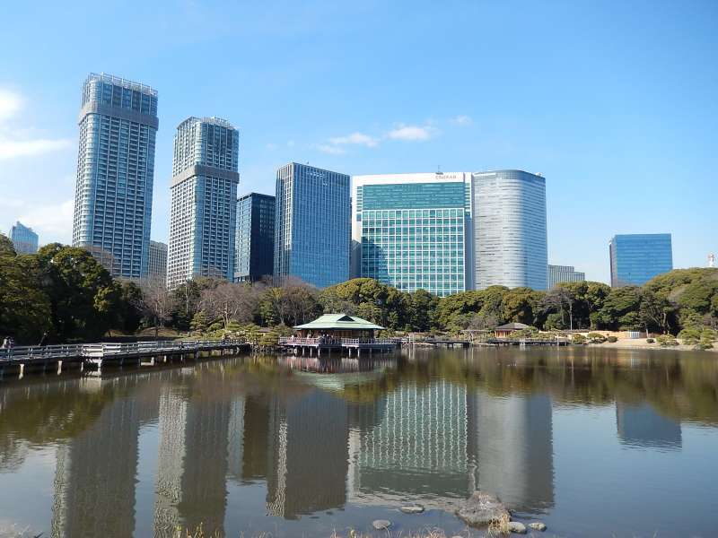 Hamarikyu gardens and a tea house