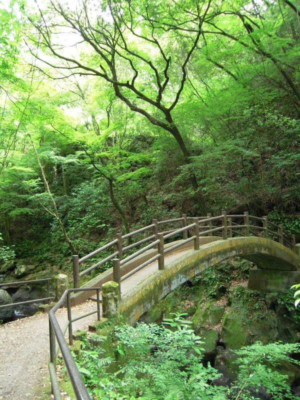 Taiko bridge.  This is one of the spiritual spots in Takachiho.