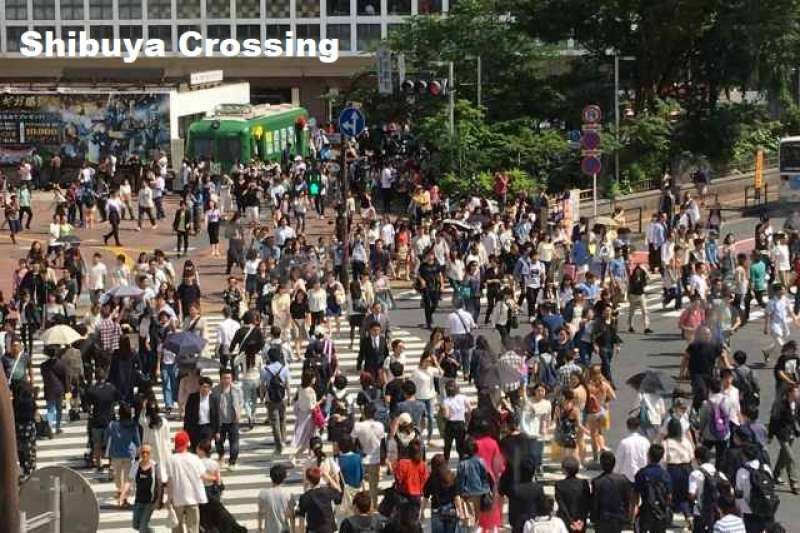 8. Walk around Shibuya, Contrast of Busy and Quiet