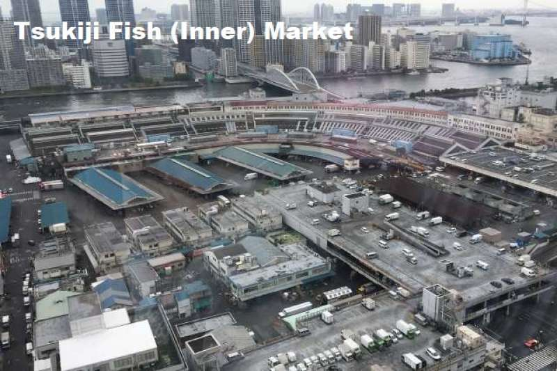 2. Busy Tsukiji Fish Market