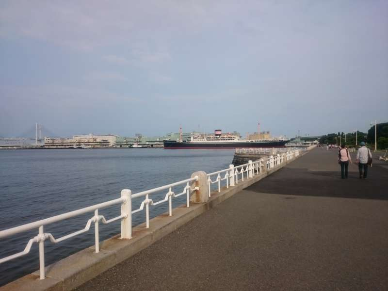 One day-Private Tour based on your requests in Yokohama