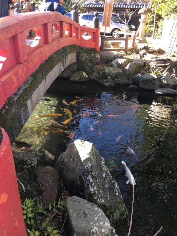 beautiful sacred pond at shrine
