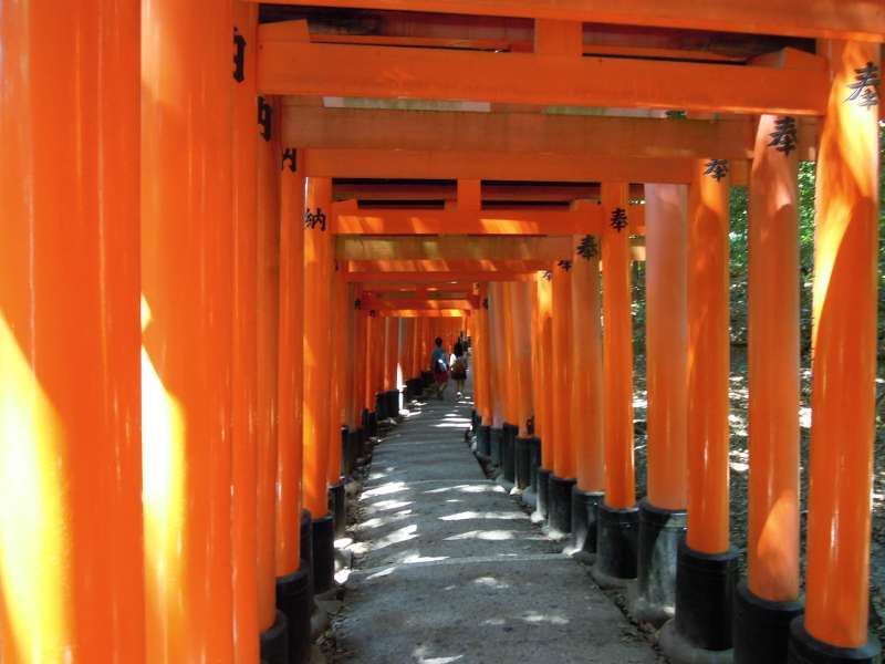 A thousand torii gates of Fushimi Inari Grand Shrine