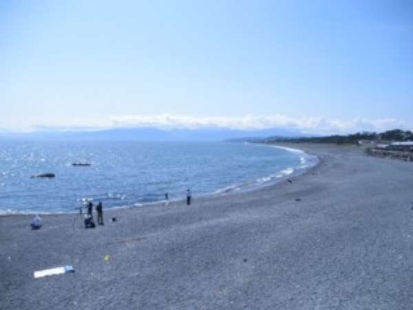 Enjoy strolling alongside the beach. You can see Mt. Fuji, Izu Peninsula and Oshima Island at a glance in crisp weather. There is  a specific place which is popular among bird-watchers. Japanese green pigeons called