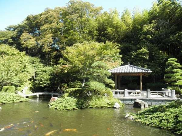 Enjoy a traditional Japanese garden watching huge carps swimming in the pond. The greenery in spring is so refreshing, and the colored leaves in autumn is so beautiful here. You can find the beauty of Japanese traditional landscape gardening.