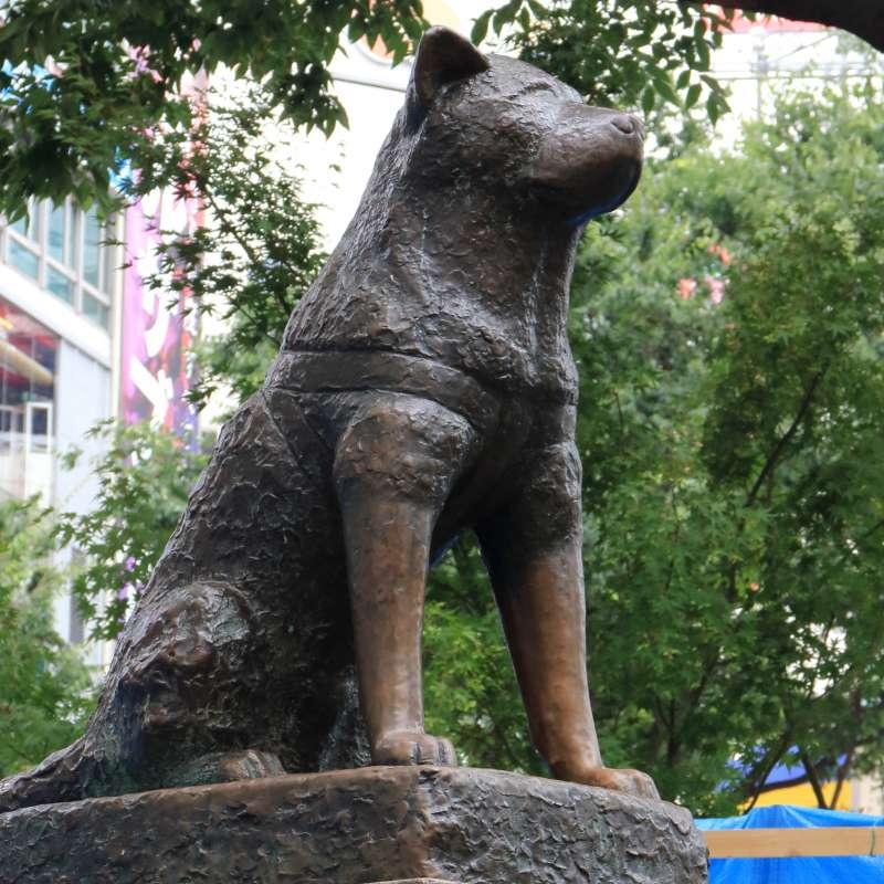 a stature of HACHI  a faithful dog