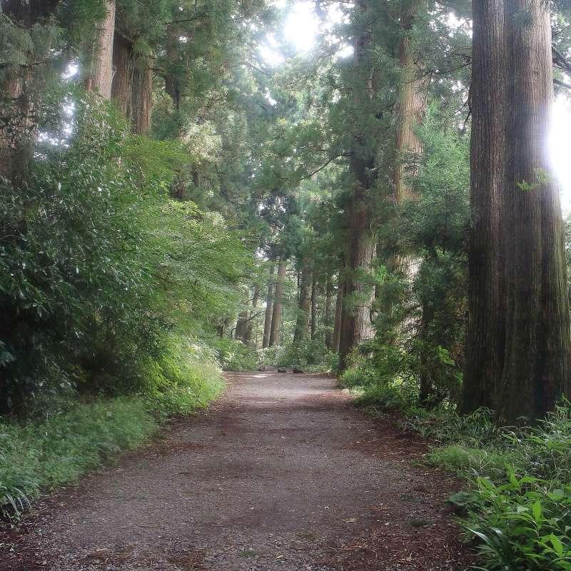 Old Tokaido express way