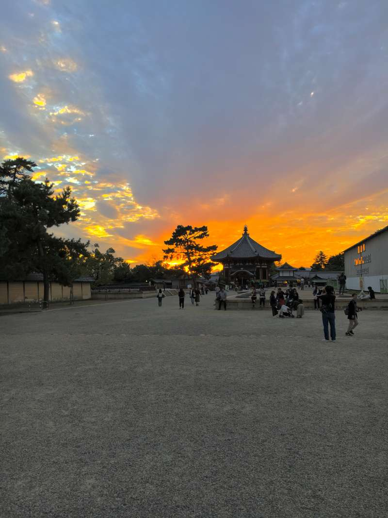 Sunset at Kohfukuji Temple
