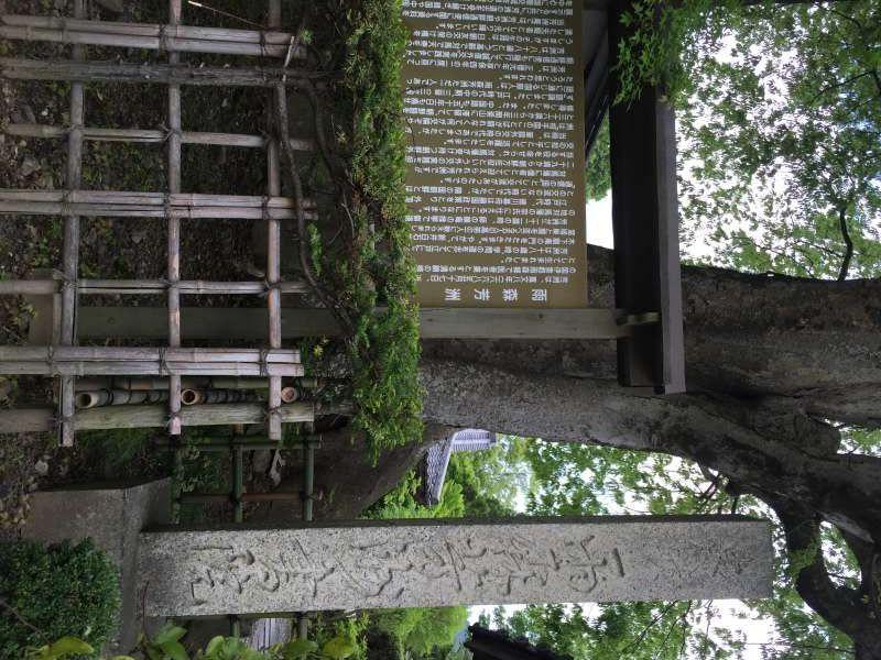 [May] The East Asian Cultural Exchange House (Hoshu Amenomori (雨森報酬) Seminar House) (2 of 3)