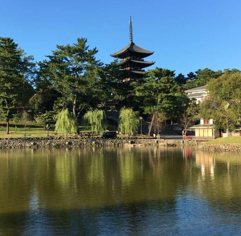 Sarusawaike Pond