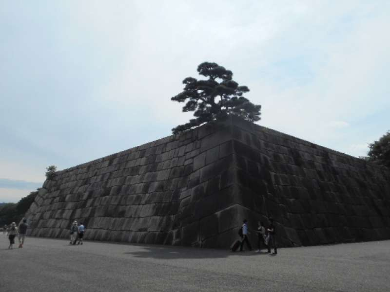 The site of the Main Tower of Edo Castle