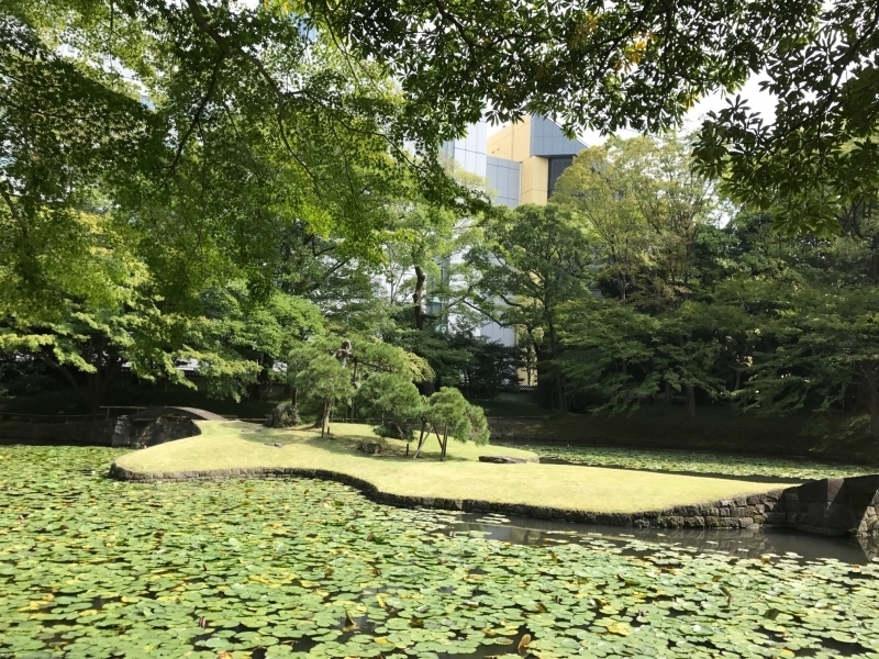 Koishikawa Korakuen Garden, constructed about 400 years ago.