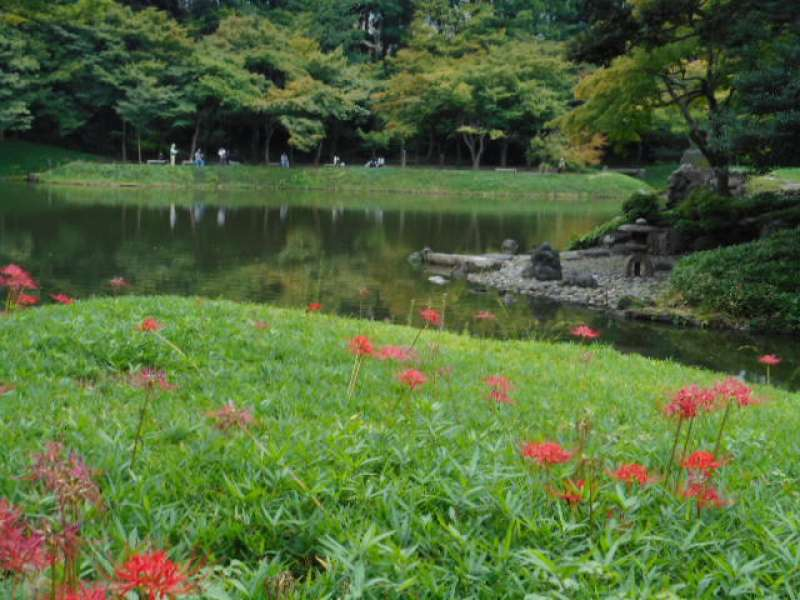 Koishikawa Kourakuen Garden - Tokyo's most interesting and photogenic park