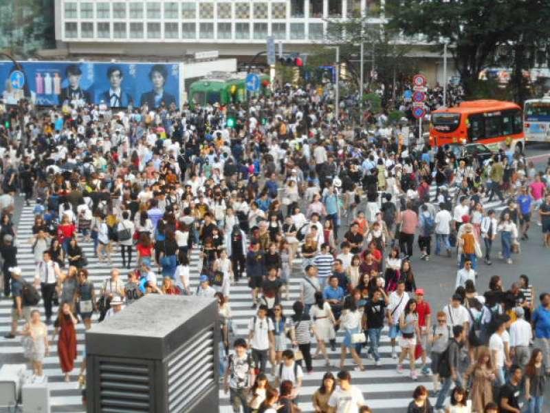 One of the options: Shibuya Crossing