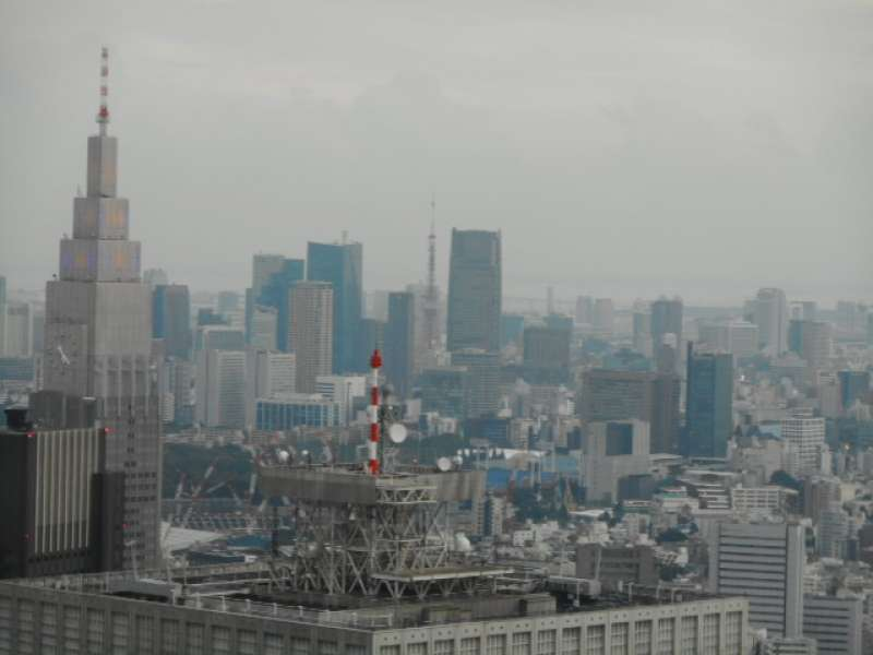 View of Yoyogi, Tokyo Tower and Rainbow Bridge from the observation deck of Tokyo Metropolitian Government Building