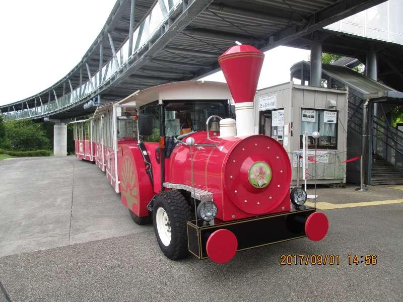 Flower train in Tottori Hanakairo Flower Park
