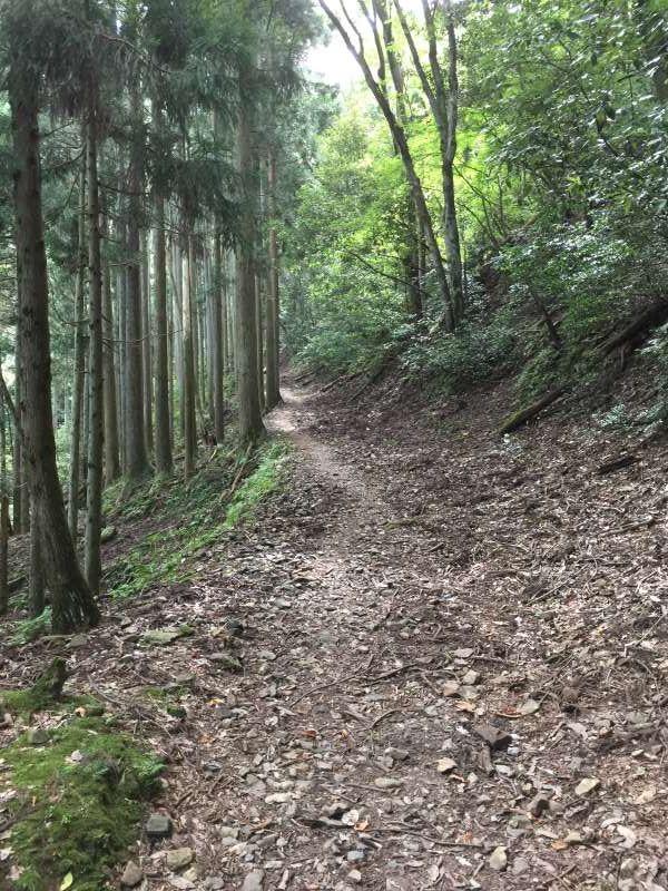 The Path towards the Summit of Old Battlefields, Mt. Shizugatake