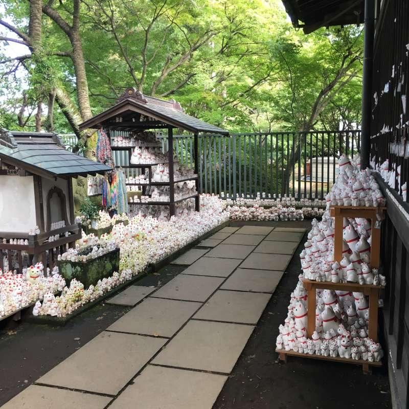 Les Maneki-Nekos au temple Goutoku-ji.