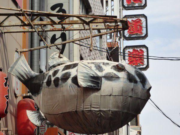 A blowfish restaurant at Dotombori