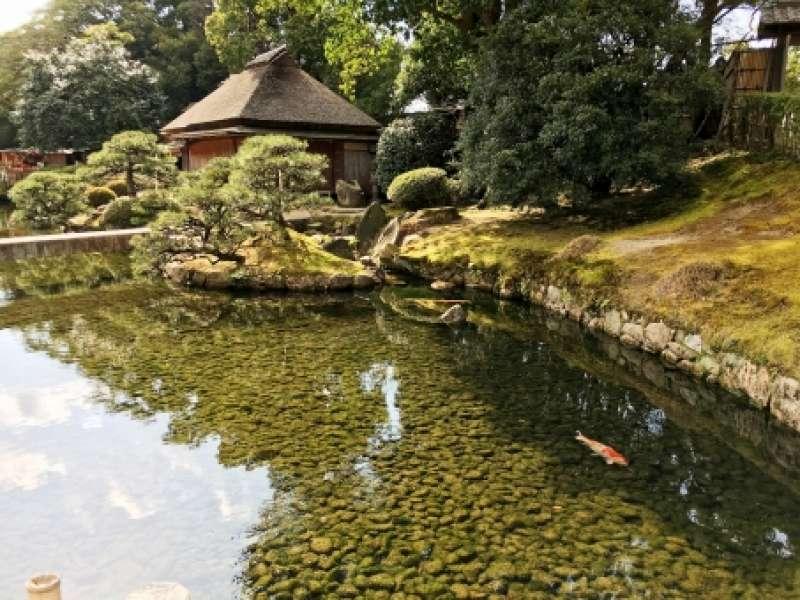 Korakuen garden Admission fee is 400 yen.