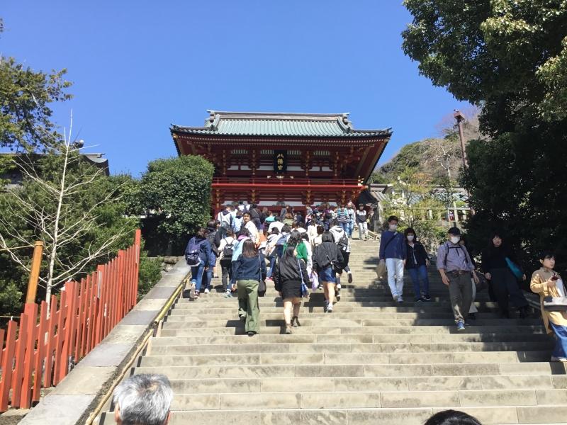 Tsuruoka Hachiman Shrine deify the Shogun of Kamakura established in 12th Century.