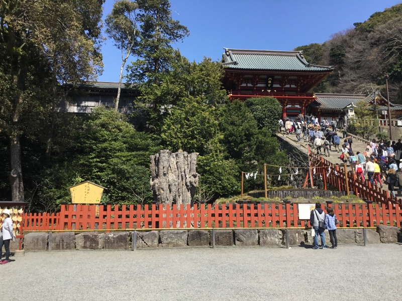Tsuruoka Hachiman Shrine as a large complex of Shinto and Buddhism