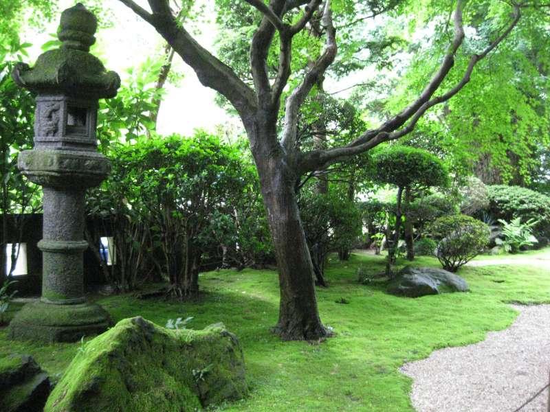 The Japanese garden in Hokokuji  Temple.