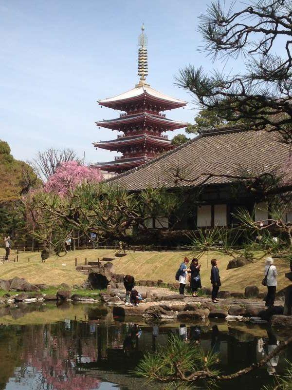 Denpo-in garden & 5-story Pagoda at Asakusa