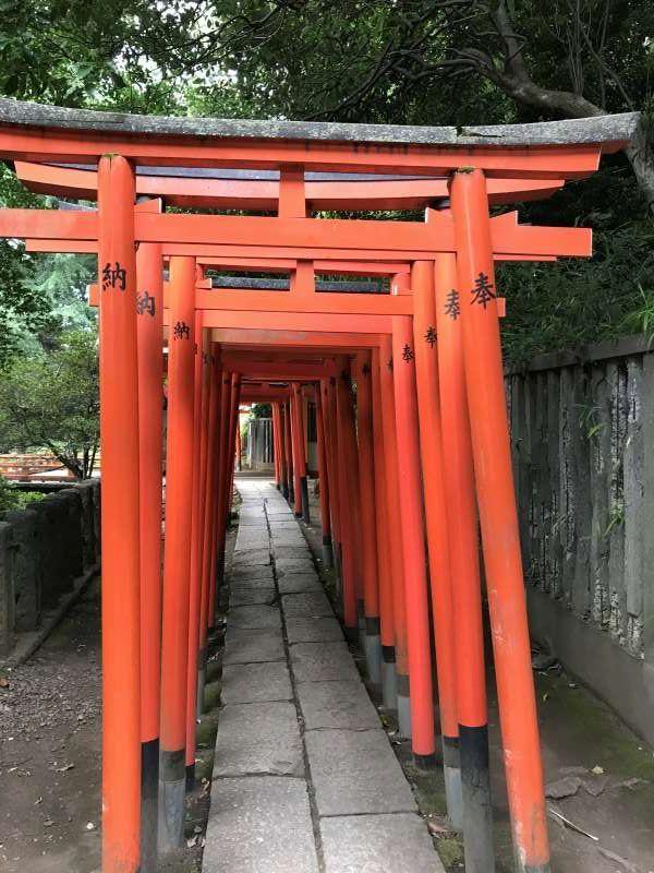 Red Torii (gate) at Nezu Shrine