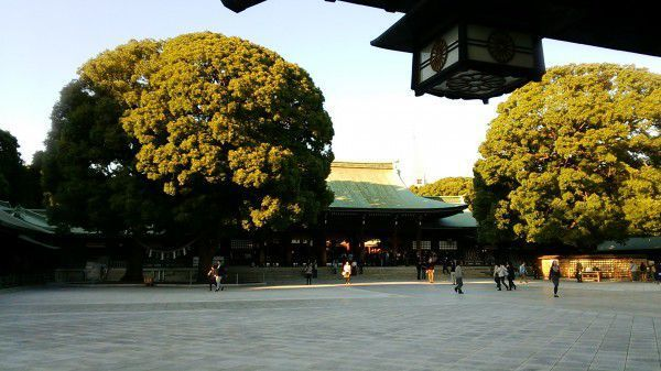 Meiji Shrine is a serene oasis in the downtown area of Tokyo.
